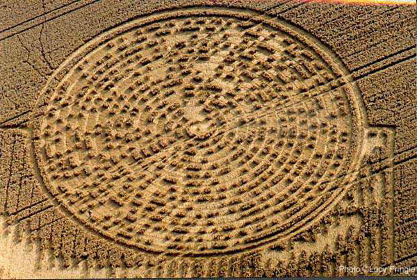 Who are the authors of the crop circles?   Listen to the Earth
