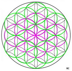 A symbol of the flower of life