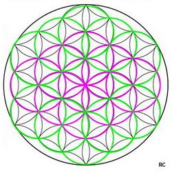Symbole de la fleur de vie
