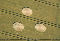 Three isolated circles - Stanton Bridge - July 2008