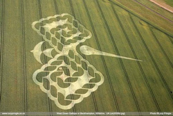 "Crop circle seen at West Down Gallops on July 4, 2009, with its ""needle"""