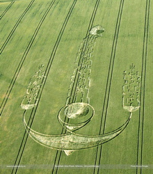 Crop circle formed in South Field (Alton Priors) on June 27, 2009