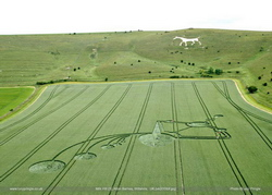 Crop circle of Milk Hill (1st phase) discovered on June 21, 2009