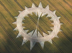 Allington, crop circle created and partially mowed on June 27, 2009