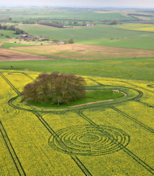 Formation of April 14, 2009, near two mounds, at the edge of Ridgeway and Avebury